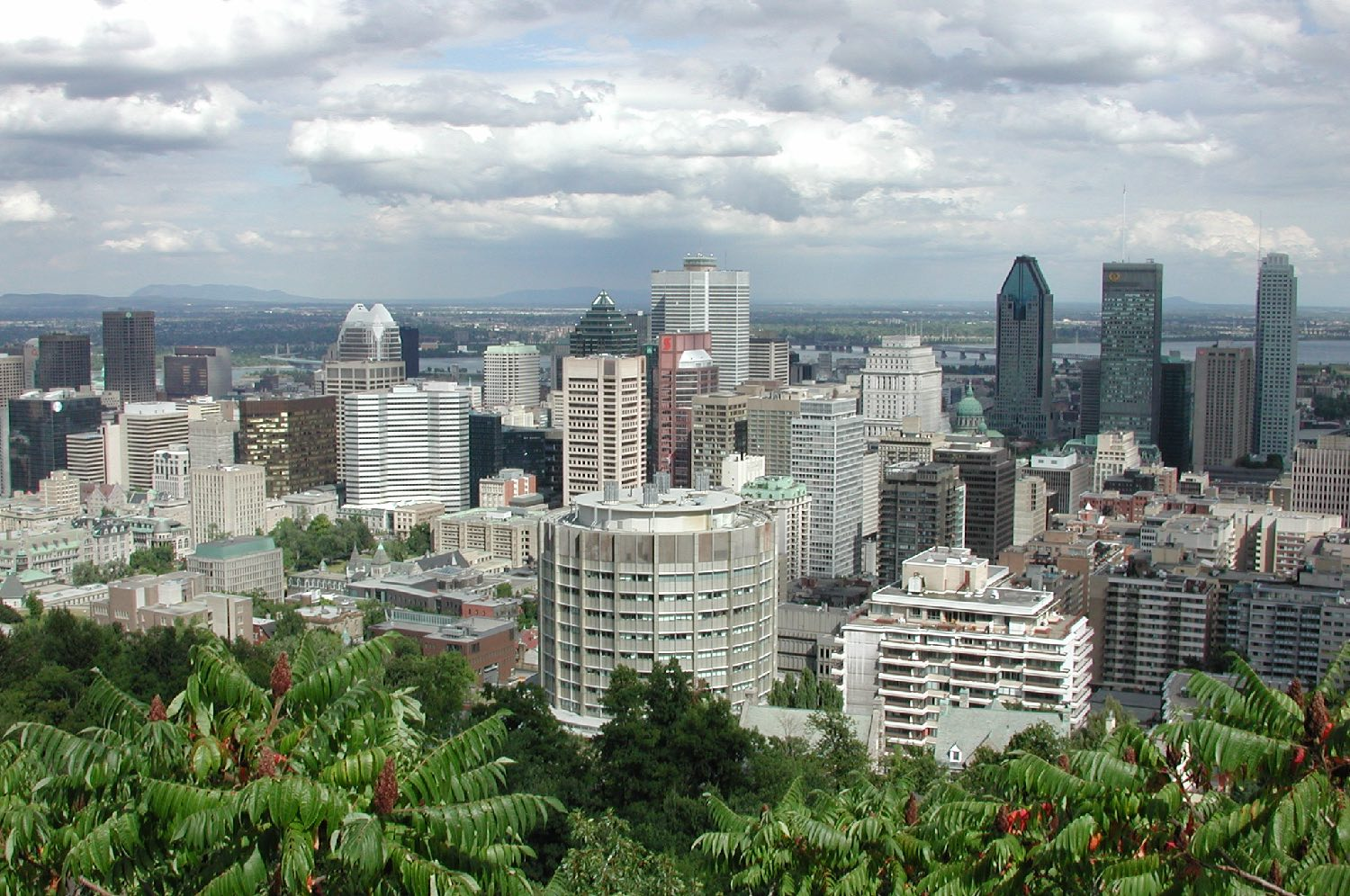 Montreal   View from Mont-Royal 1   photo sandrine cohen