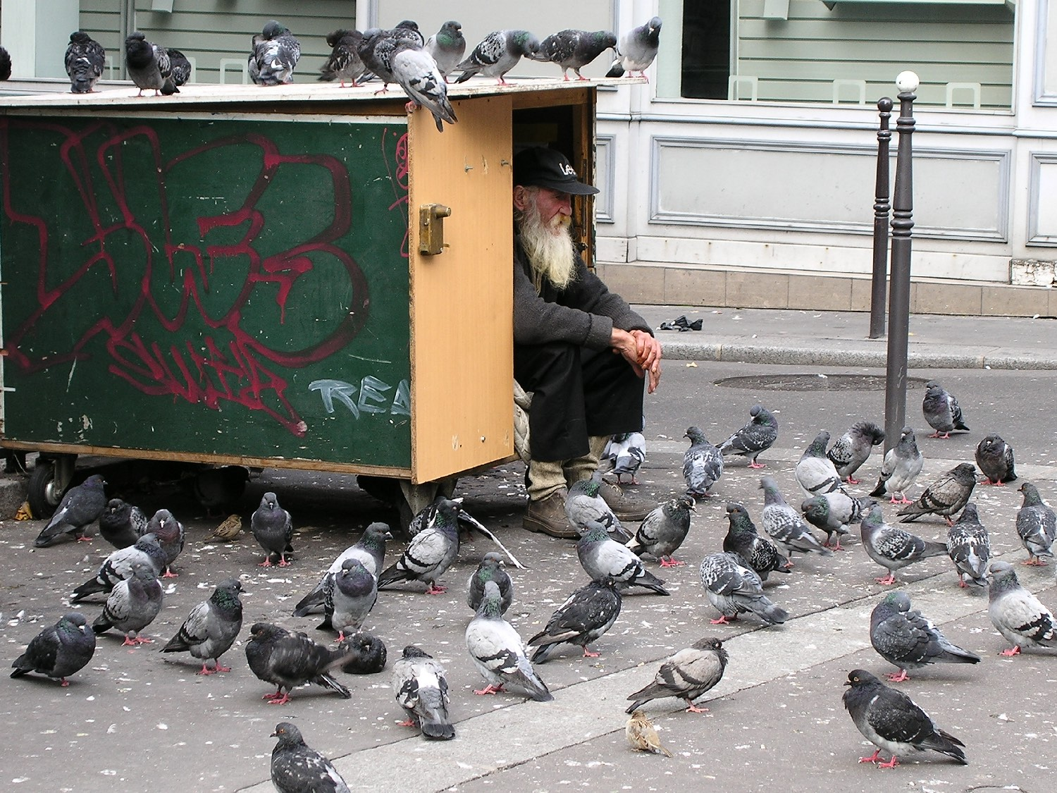 Homeless with pigeons | Paris | streetphotography | ©sandrine cohen