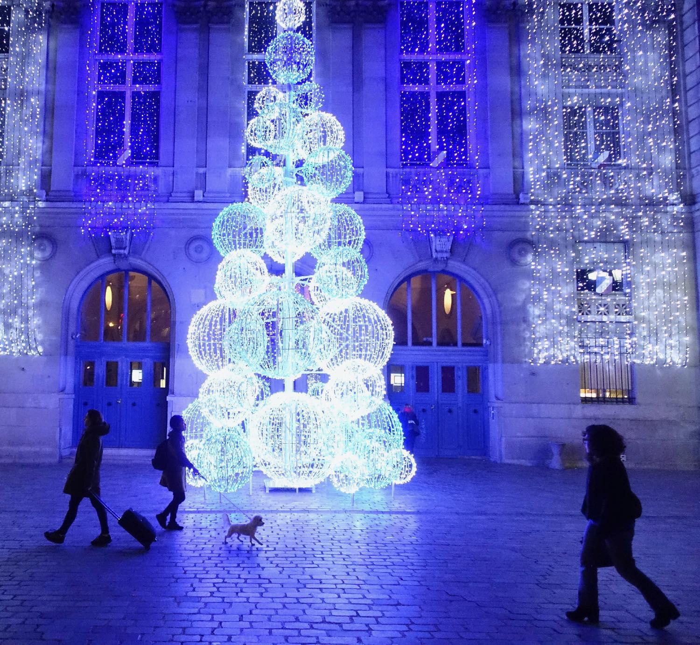 Dog   Mairie du 13e Paris   Décoration de Noël   photo sandrine cohen