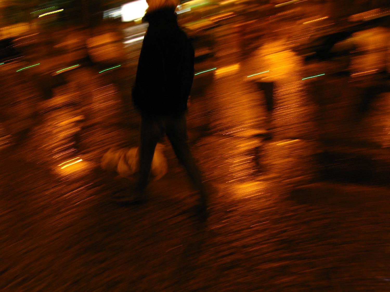 Dog in the night at Paris   photo sandrine cohen