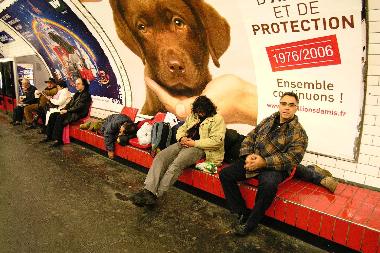 Publicité avec chien dans le métro   Paris   photo sandrine cohen