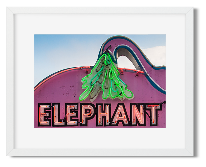 elephant-detail.png