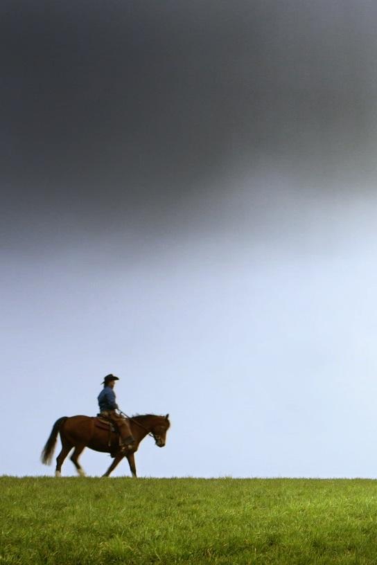 Der Cowboy und ich -