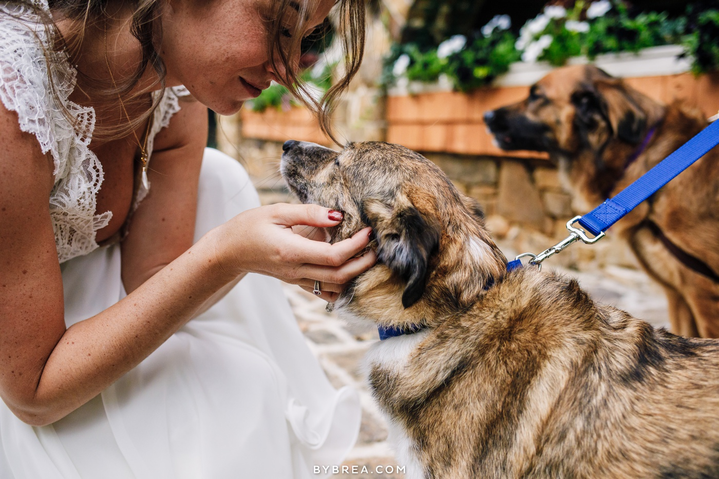 gabby-max-historic-shady-lane-wedding-photos_0459.jpg