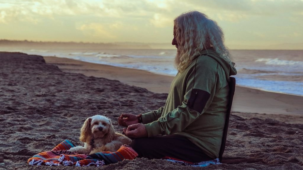 Davidji Sunrise Beach Meditation Dog