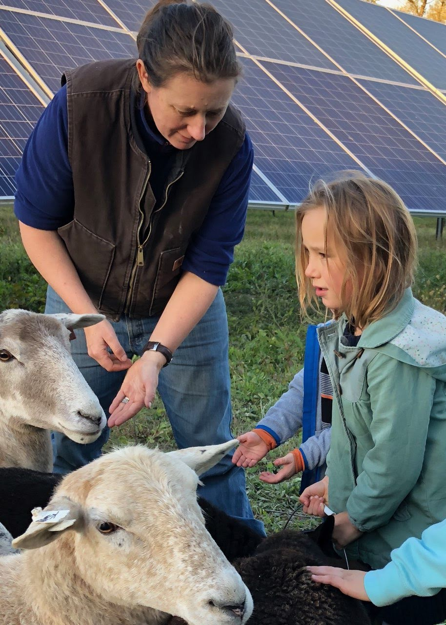 Lexie Hain, Agrivoltaic Solutions, Executive Director of American Solar Grazing Association