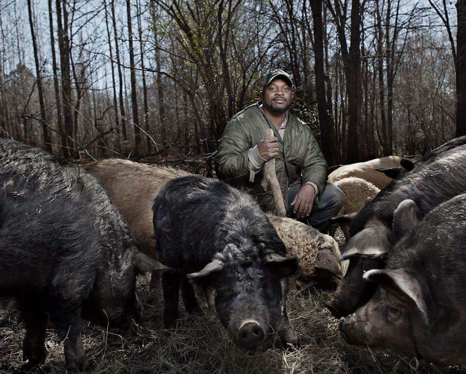 Jon Jackson, Founder STAG Vets Inc., Comfort Farms