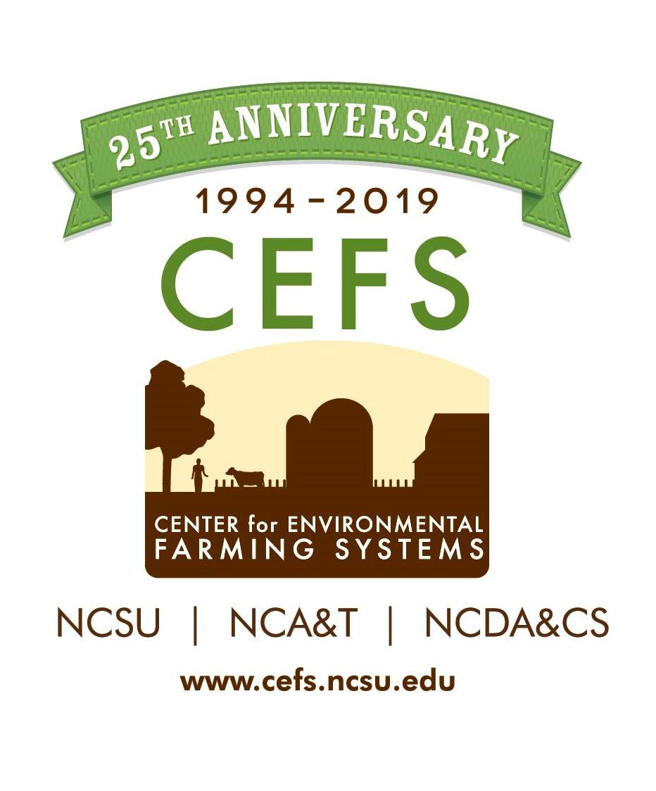 CEFS 25th anniversary logo cropped.jpg
