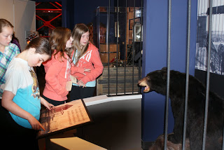 Grade 5 students, on a tour to learn about immigration to southern Alberta, mesmerized by the black bear in the exhibit.