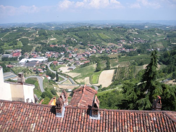The hills of langhe