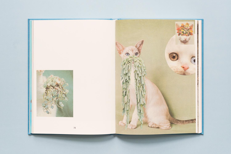 SE-Cats&PlantsBook-4.jpg