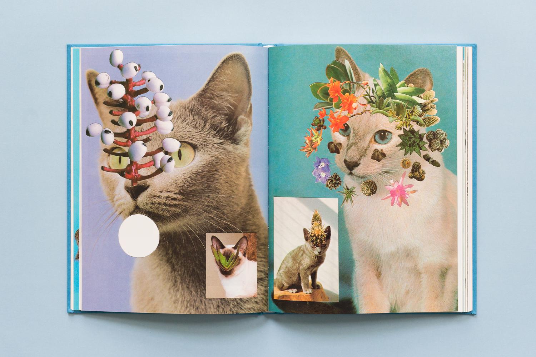 SE-Cats&PlantsBook-3.jpg
