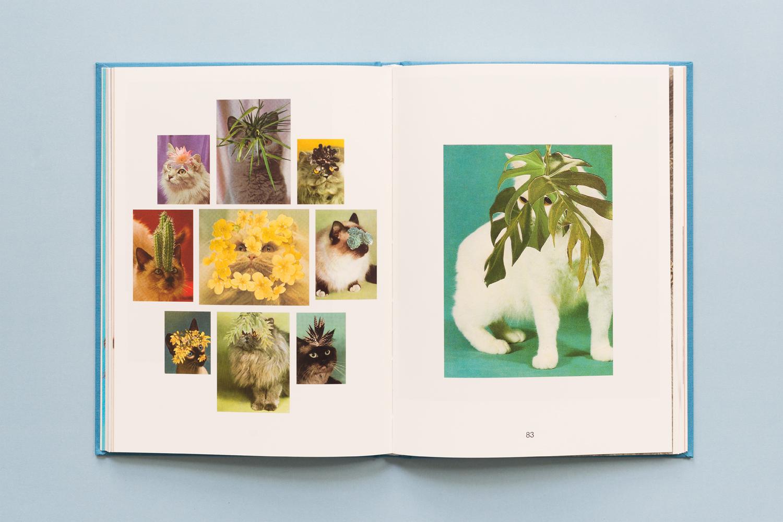 SE-Cats&PlantsBook-5.jpg