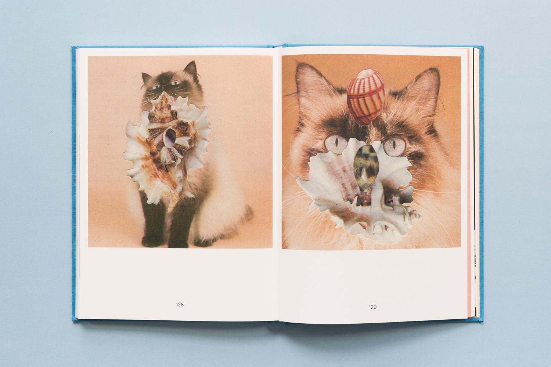 SE-Cats&PlantsBook-8.jpg