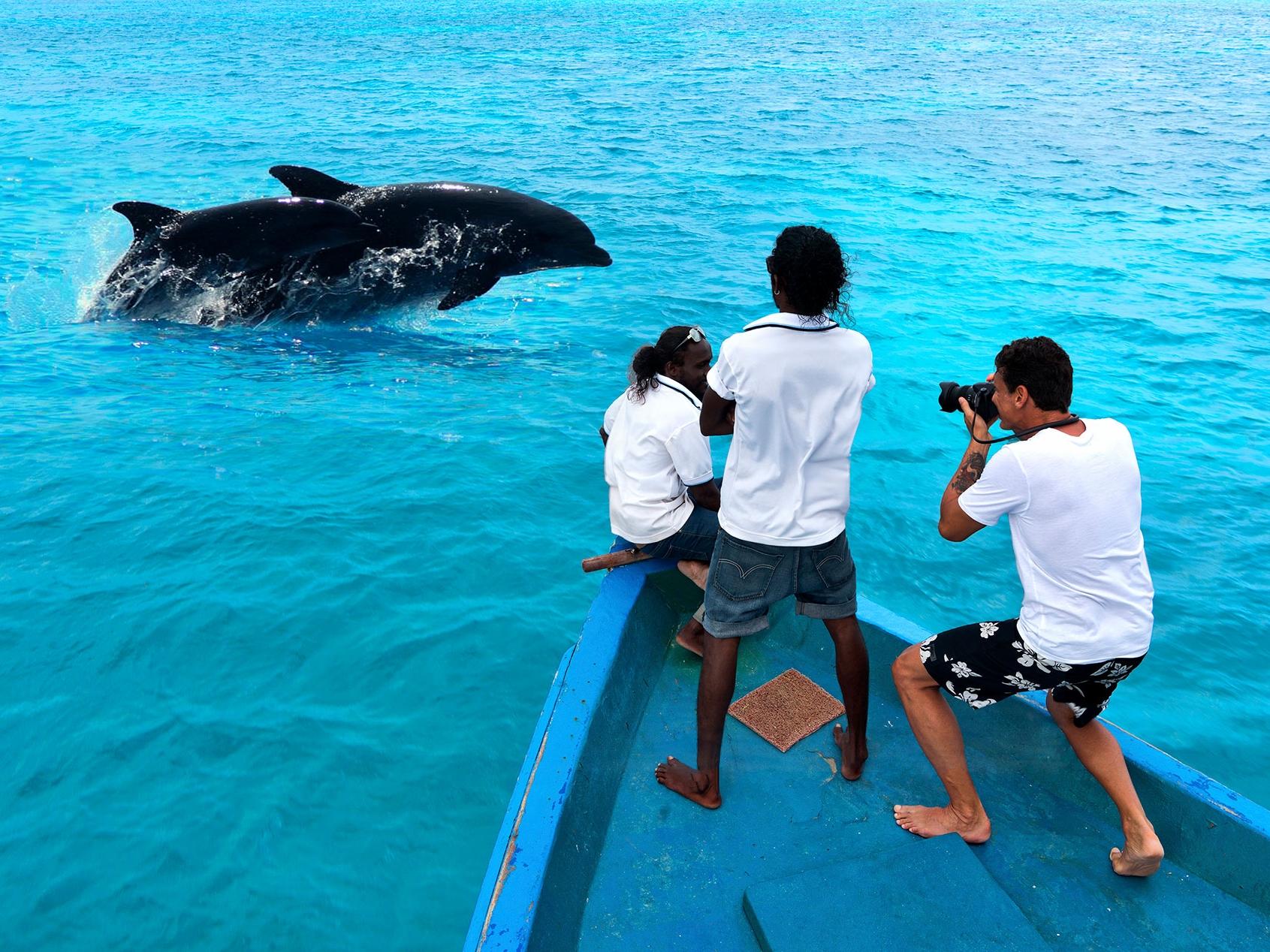 Dolphin-cruise.jpg