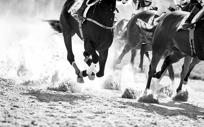 oolsg-private-homes-horse-racing-800-x-500.jpg