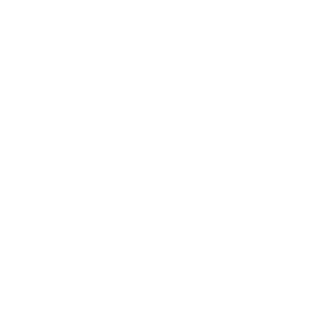the-fives-logo2.png