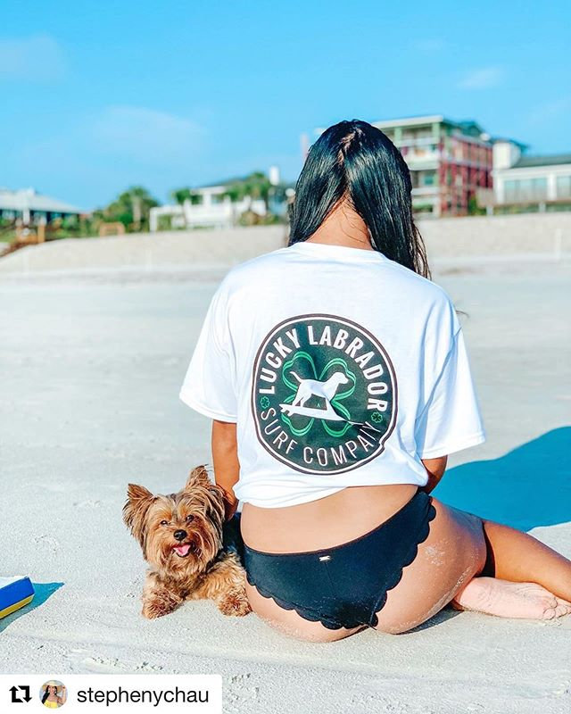 @overjoyedyorkie and @stephenychau are rocking that @luckylabradorsurfco tee! Check out this awesome local Brand and how they're giving back to our furry friends ❤️ #Repost @stephenychau ・・・ @overjoyedyorkie and I wanted to show you guys a new Brand-@luckylabradorsurfco! They have men and women's shirts and hats. Plus, a portion of their proceeds goes to help local animal shelters. 🐶 . . Thank you @flippersplash & @luckylabradorsurfco!
