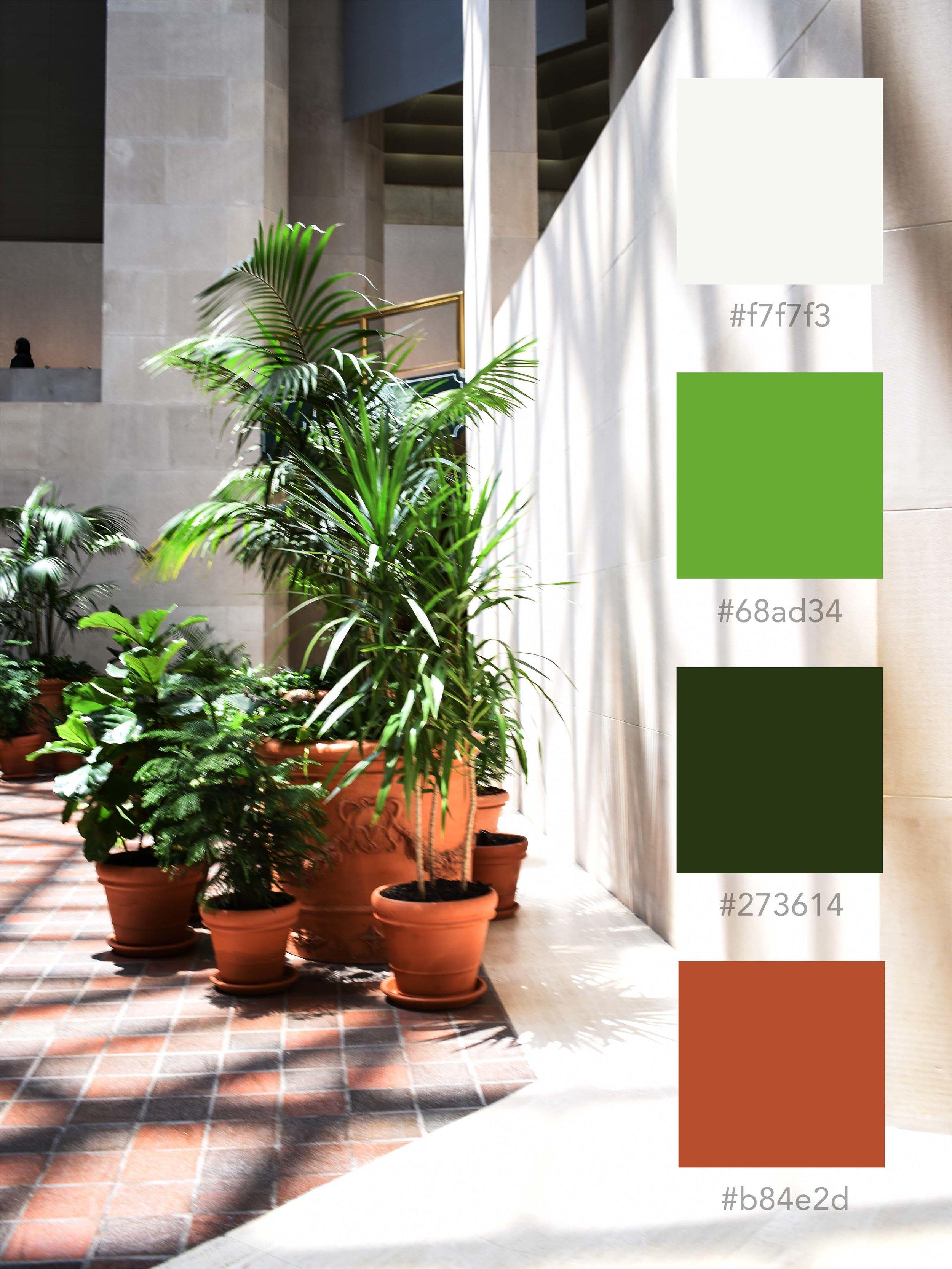 indoorplants_ct.jpg