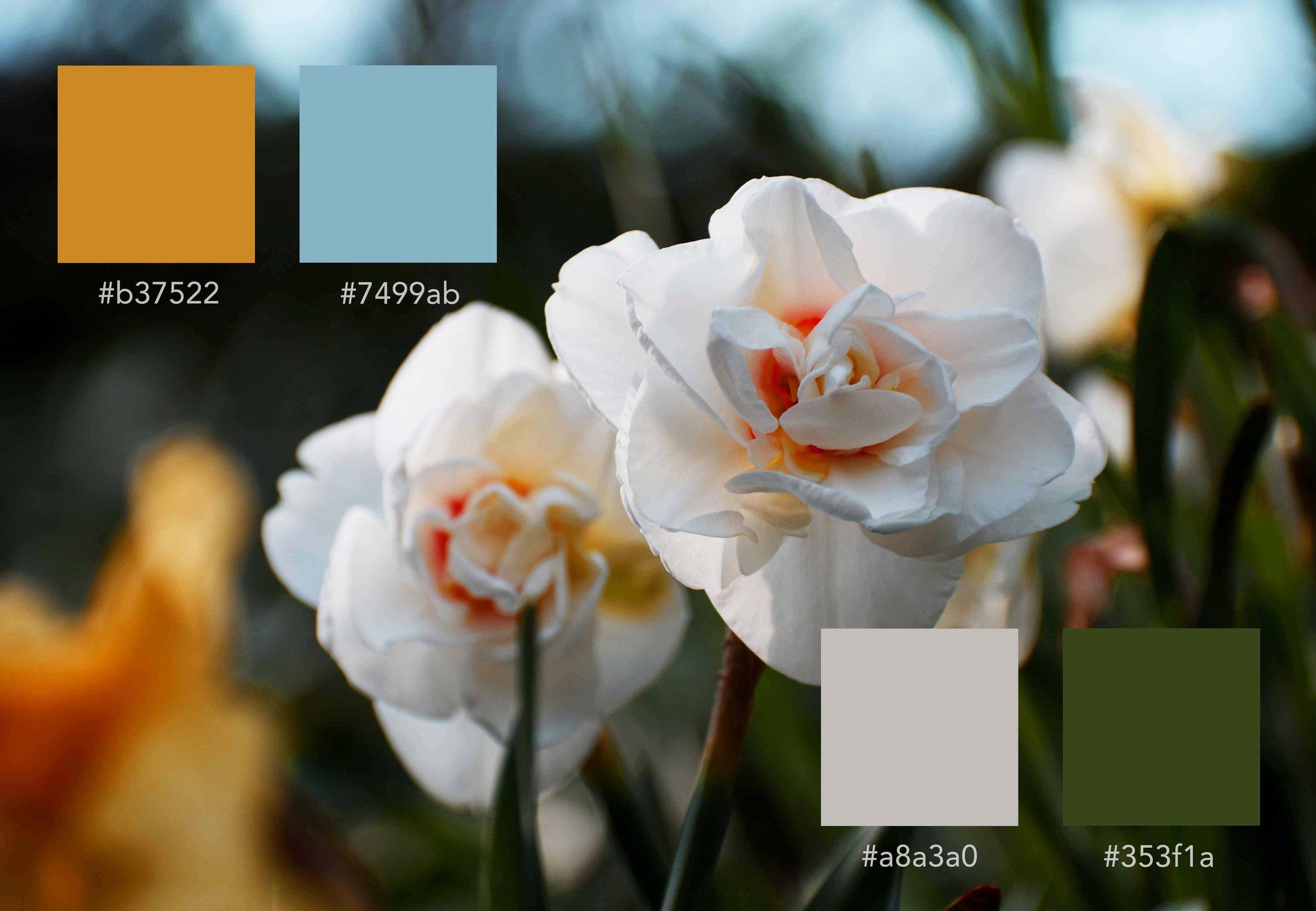 flowa_colortheory.jpg