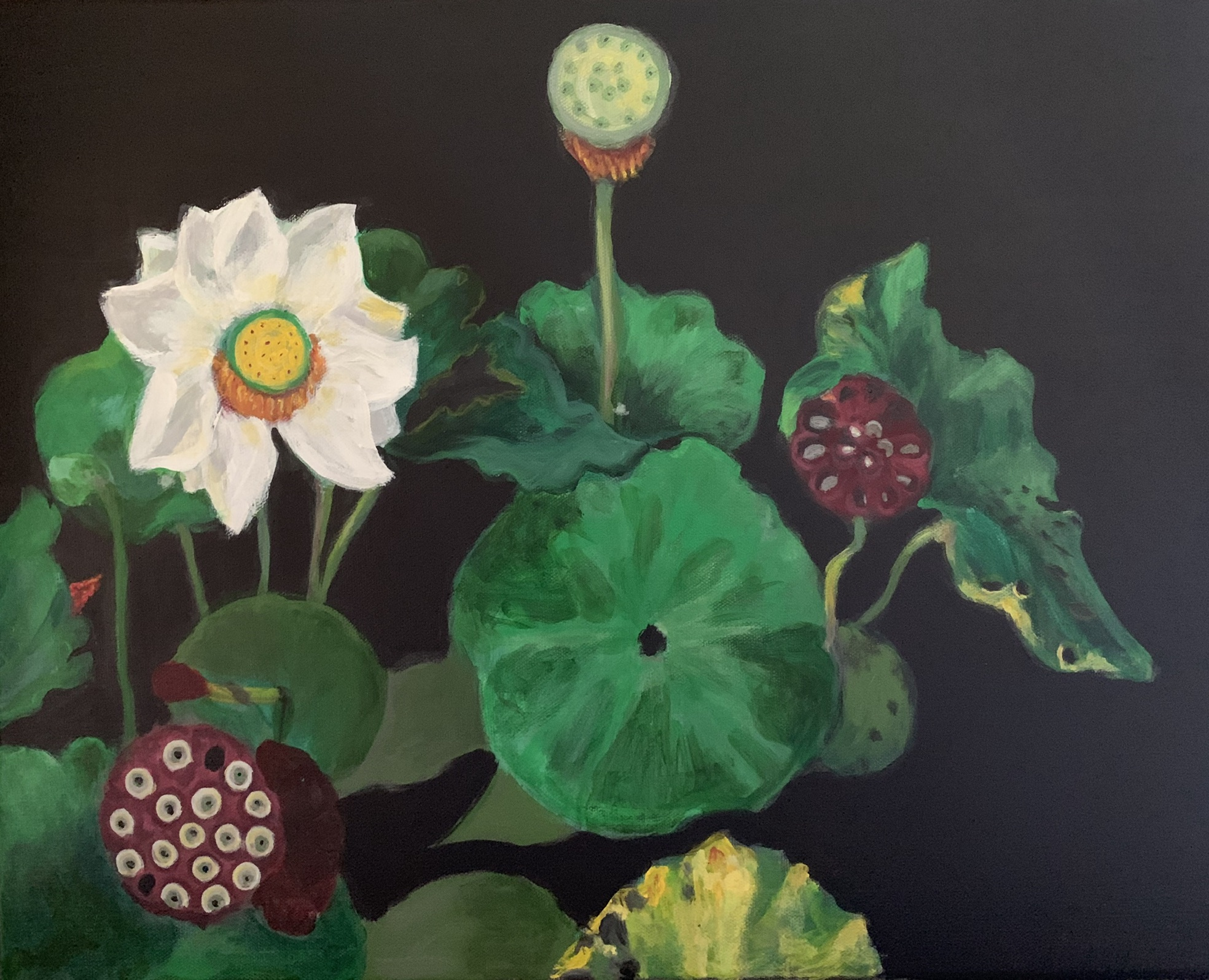 """""""Lotus life cycle"""" 16"""" x 20"""" acrylic on stretched canvas"""