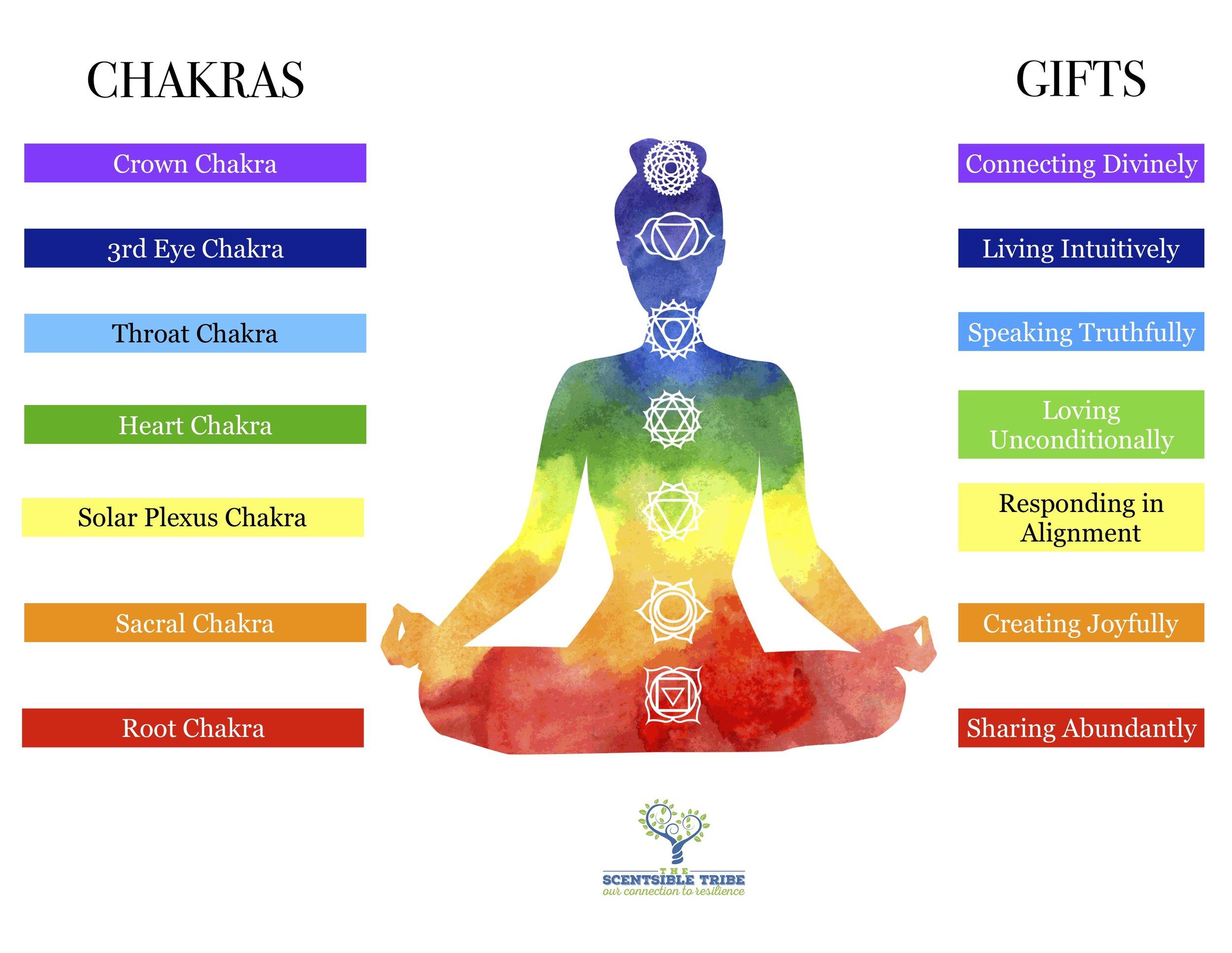 Scentsible Yoga Chakras.jpg