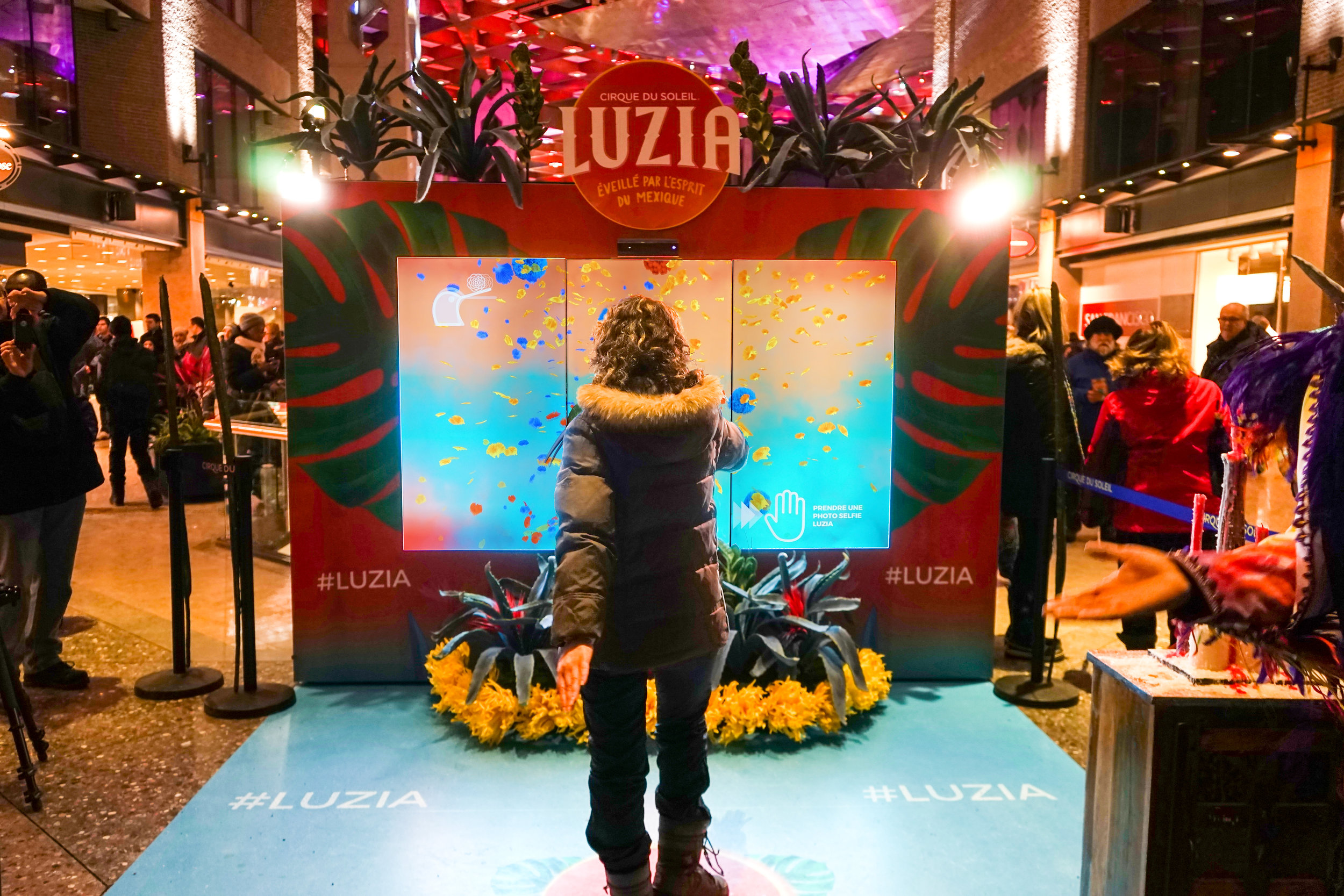 LUZIA (CIRQUE DU SOLEIL)    ///   MONTRÉAL, MEXICO CITY, WASHINGTON D.C.