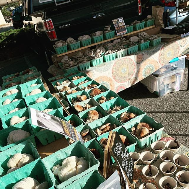 View from the #chapelhillfarmersmarket last saturday.  Thank you Emily from @heartsongfarmnc for catching the scene!