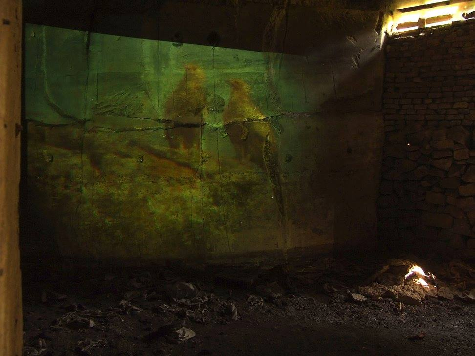 Video Installation - Vulture's Love in an abandoned mine