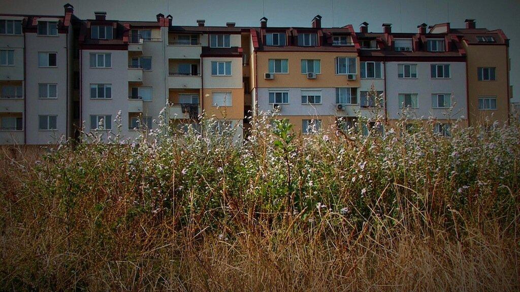 4.Field_Mladost1_Sofia_Bulgaria_Childhood_Memory.jpg