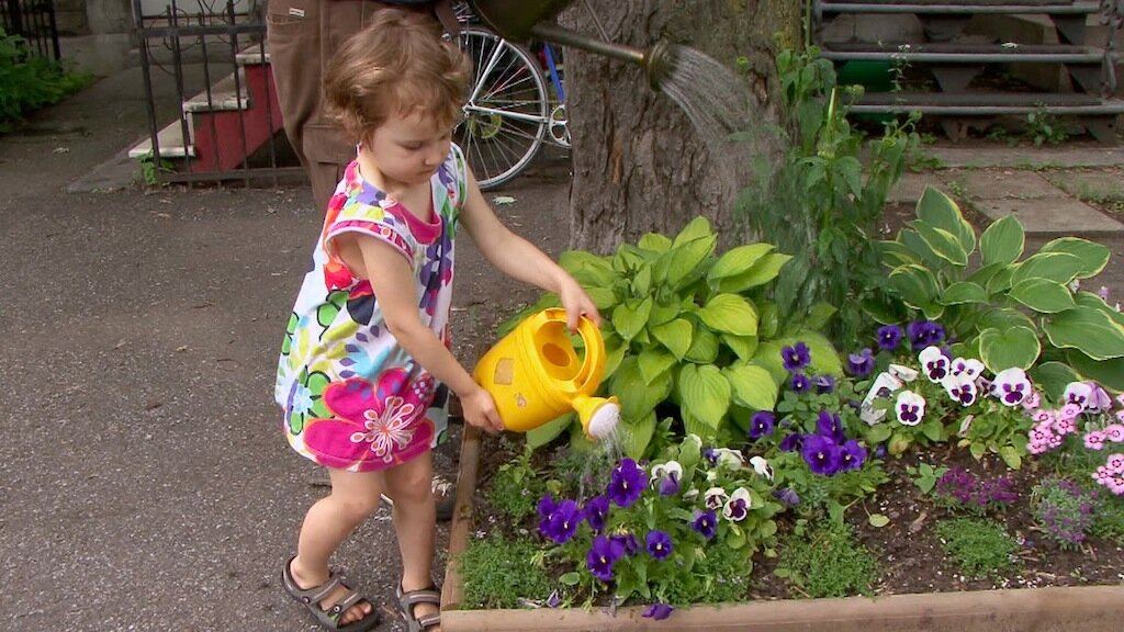 8.Gardeners_Emma_and_Patrick_Water_Tree_Square_MIle_End_Montreal_Canada._Edited.jpg