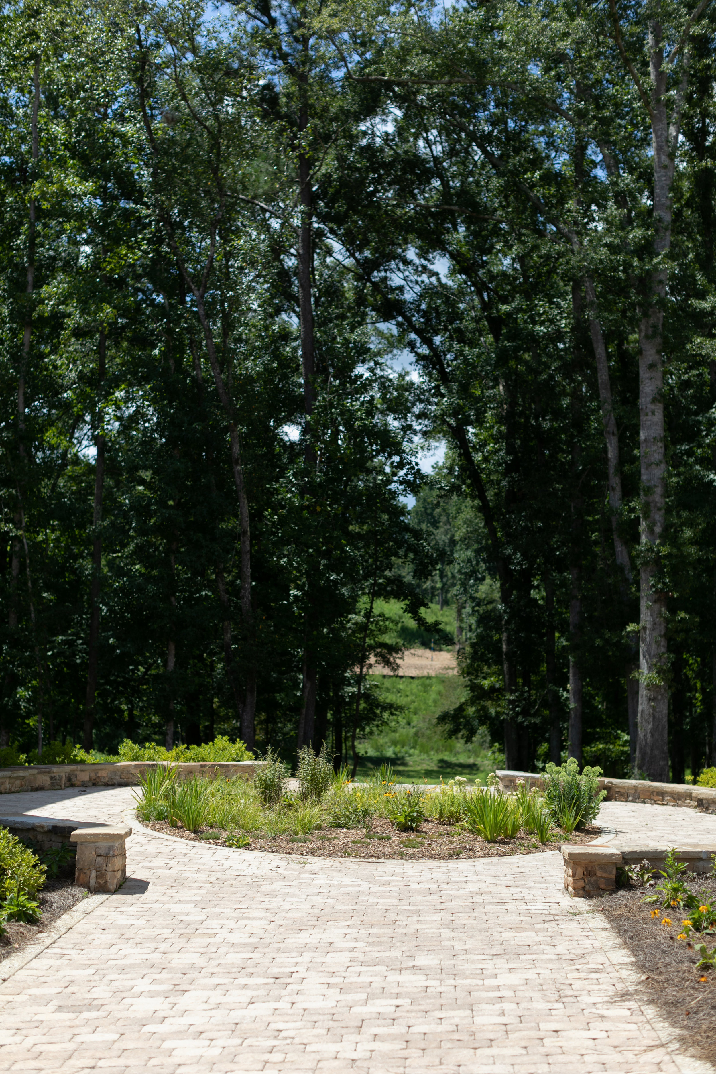 View of the Mado woods past the Anders Square Homes. Photo by    J. Ashley Photography   .