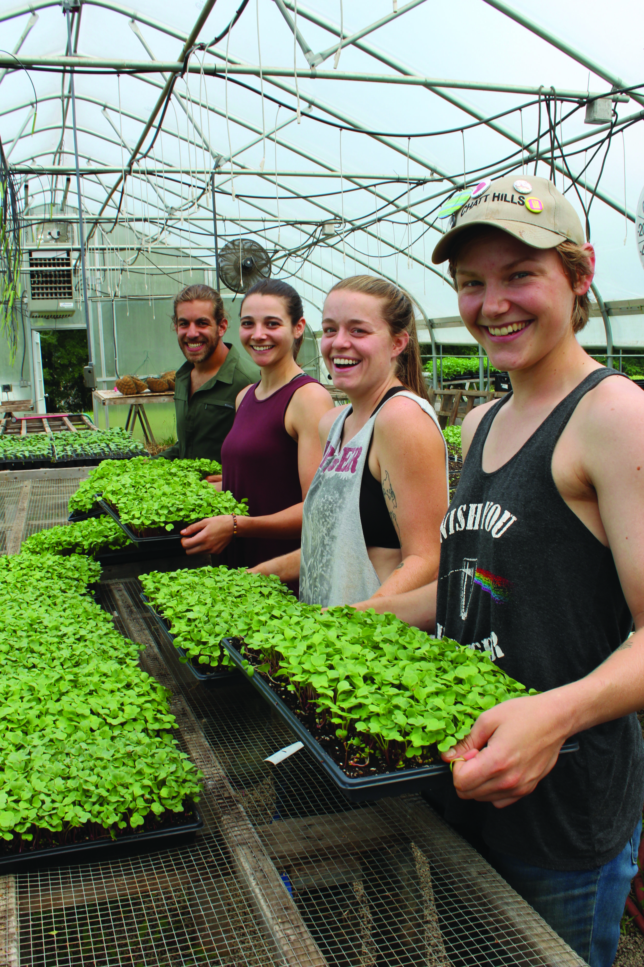The 2018 Farm Apprentice group prepares plants for the annual Plant Sale.