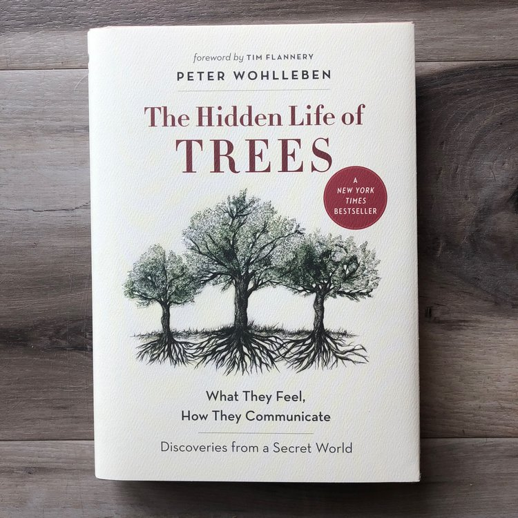 The Hidden Life of Trees - by Peter Wohlleben