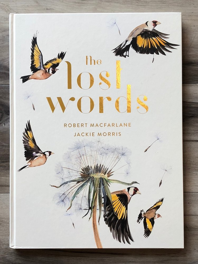 The Lost Words - by Robert Macfarlane & Jackie Morris