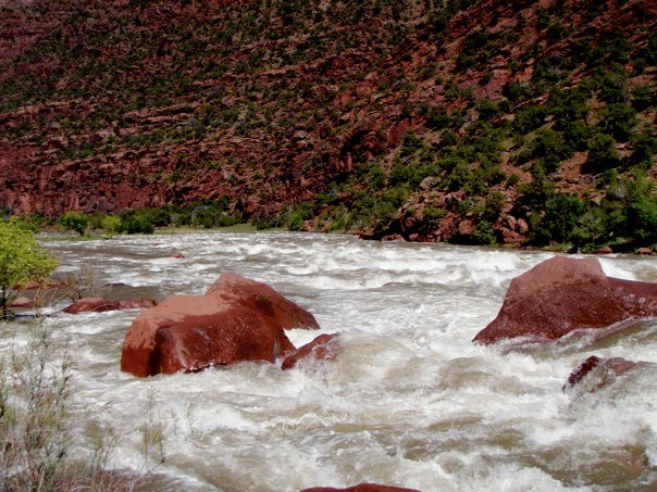 Hell's Half Mile in the exceptionally high water year of 2011. Photo: Sara Porterfield