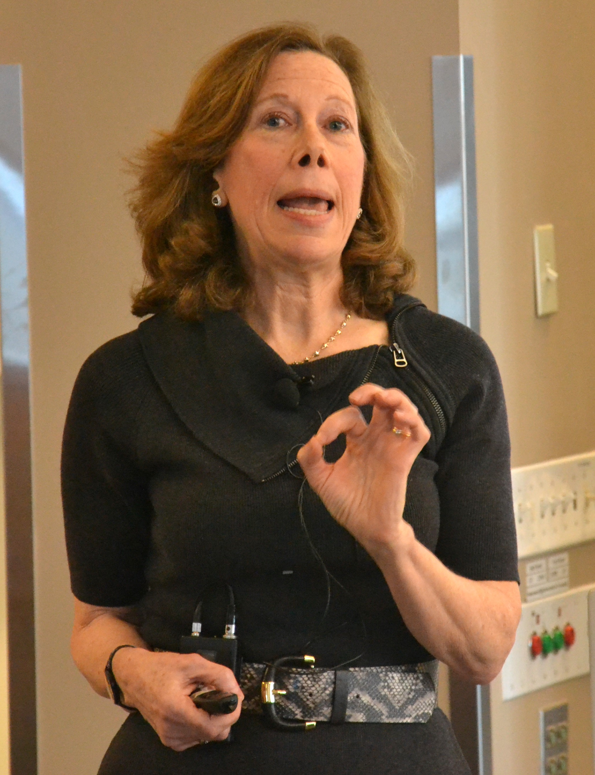 Deborah Gordon at her seminar presentation at Harvard Kennedy School of Government. A summary of her seminar is available  here .