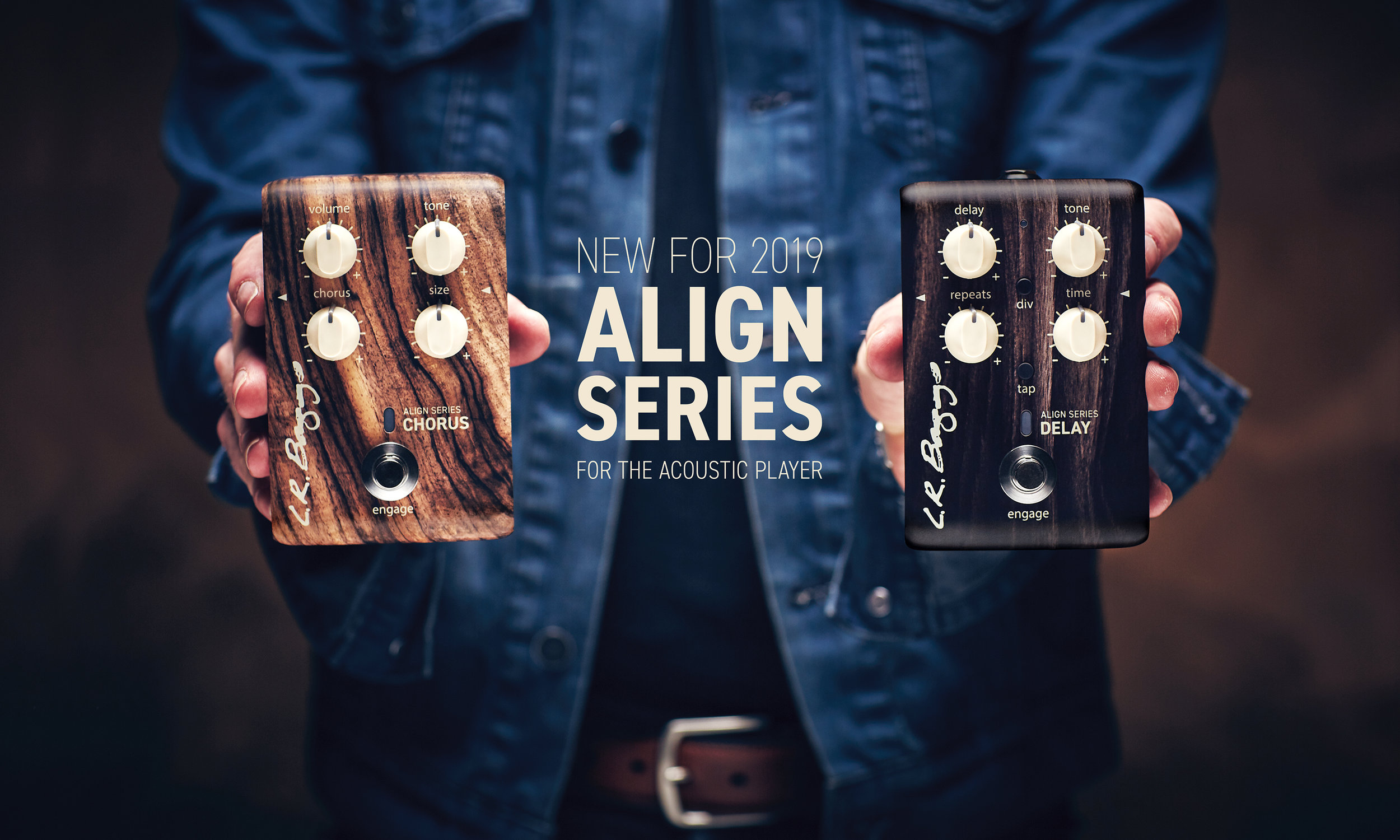 LR Baggs-Align-Series-2019.jpg