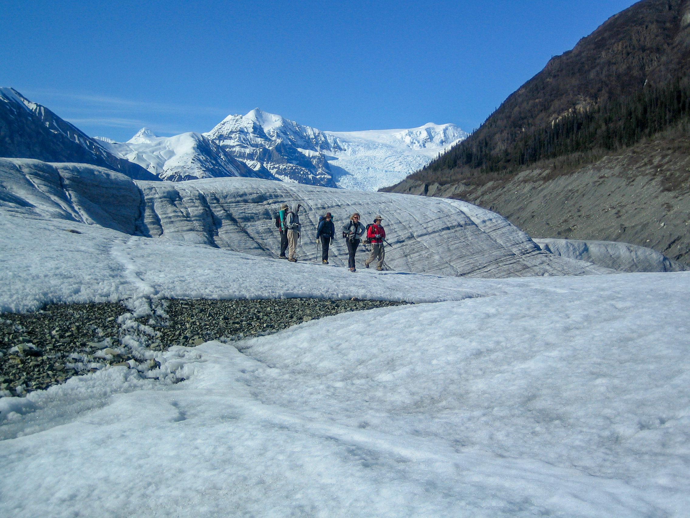 Glacier Adventure Day-Trip: Happy Glacial Hikers