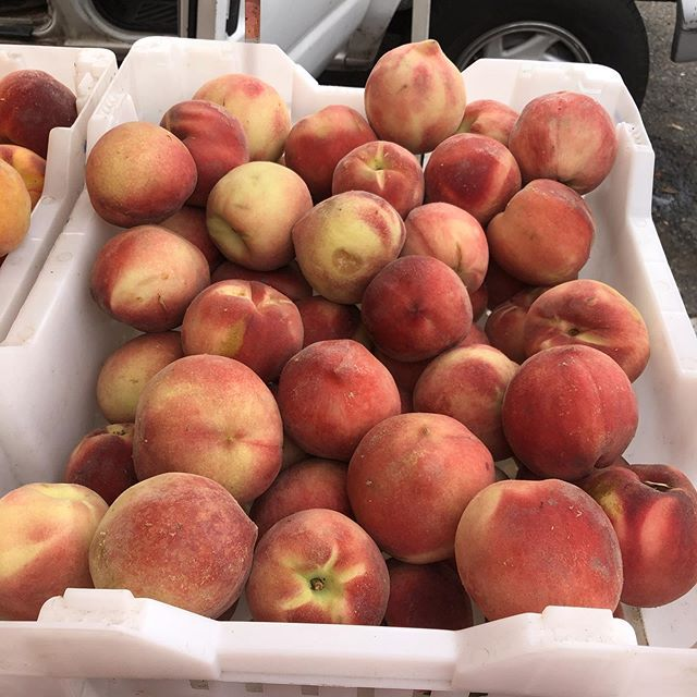 Perfect day to make a peach cobbler. Get your fresh peaches at the San Clemente farmers market.#sanclemente #sanclementelife