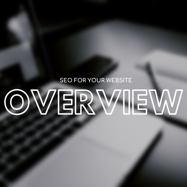 SEO For Website Articles overviews.png