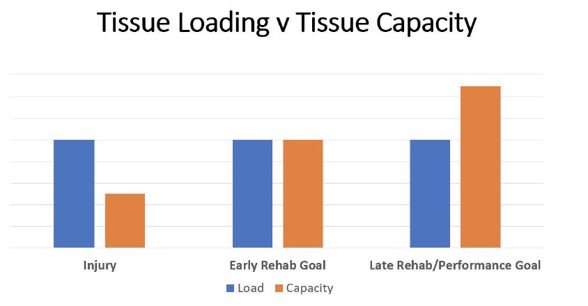 tissue-loading