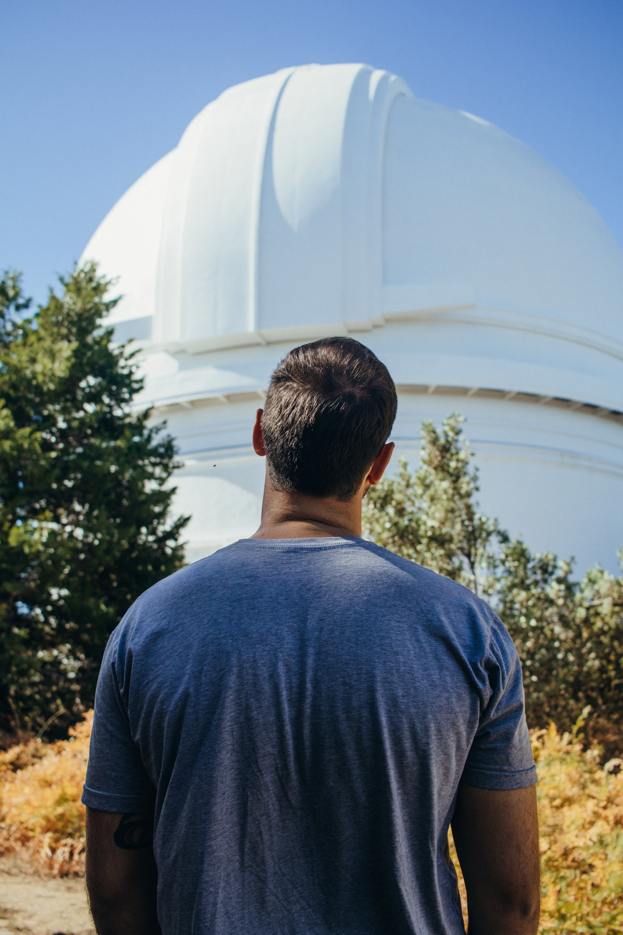gazing up at the palomar observatory