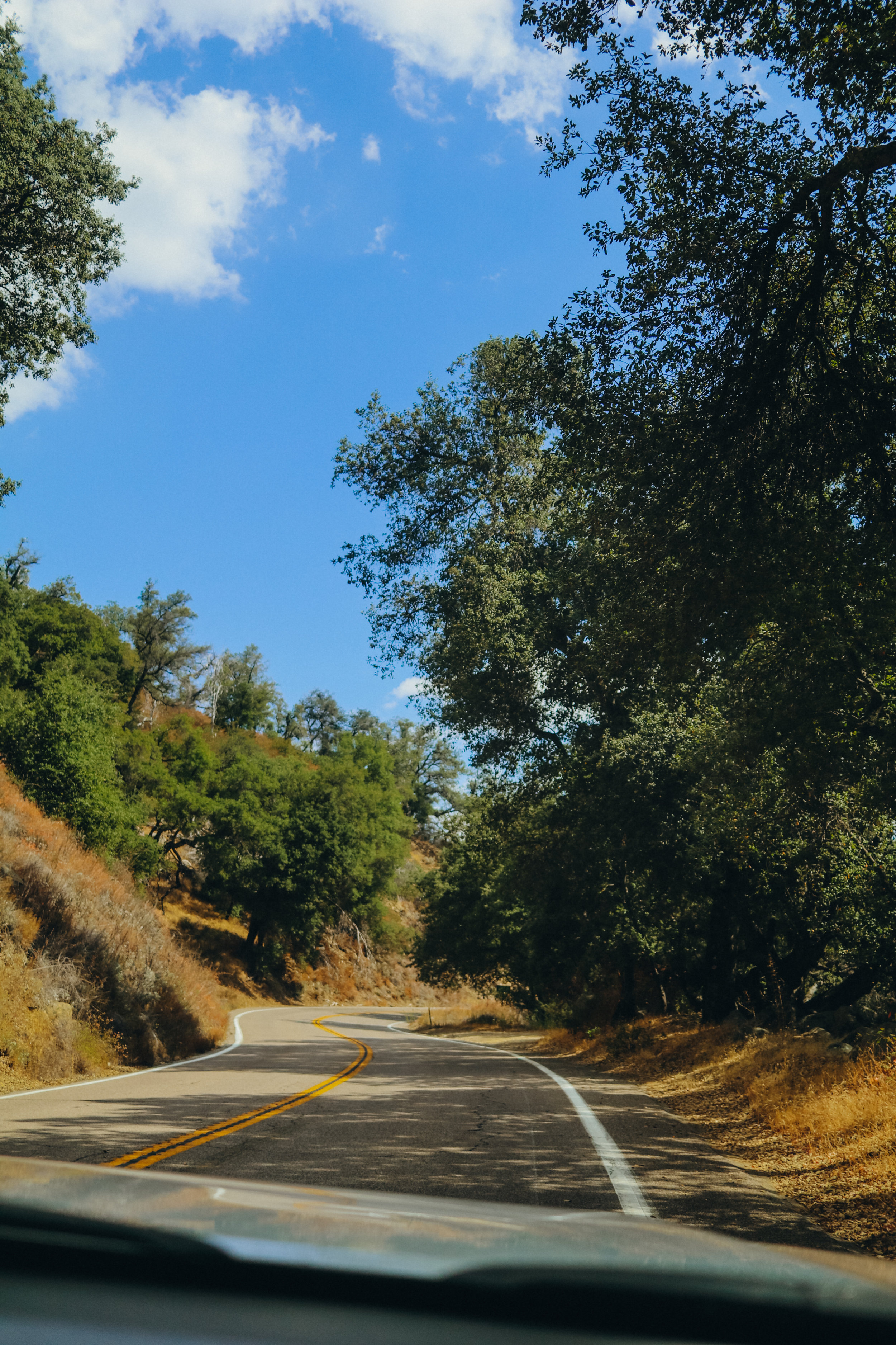 The twisty mountain roads leading to the summit of Palomar
