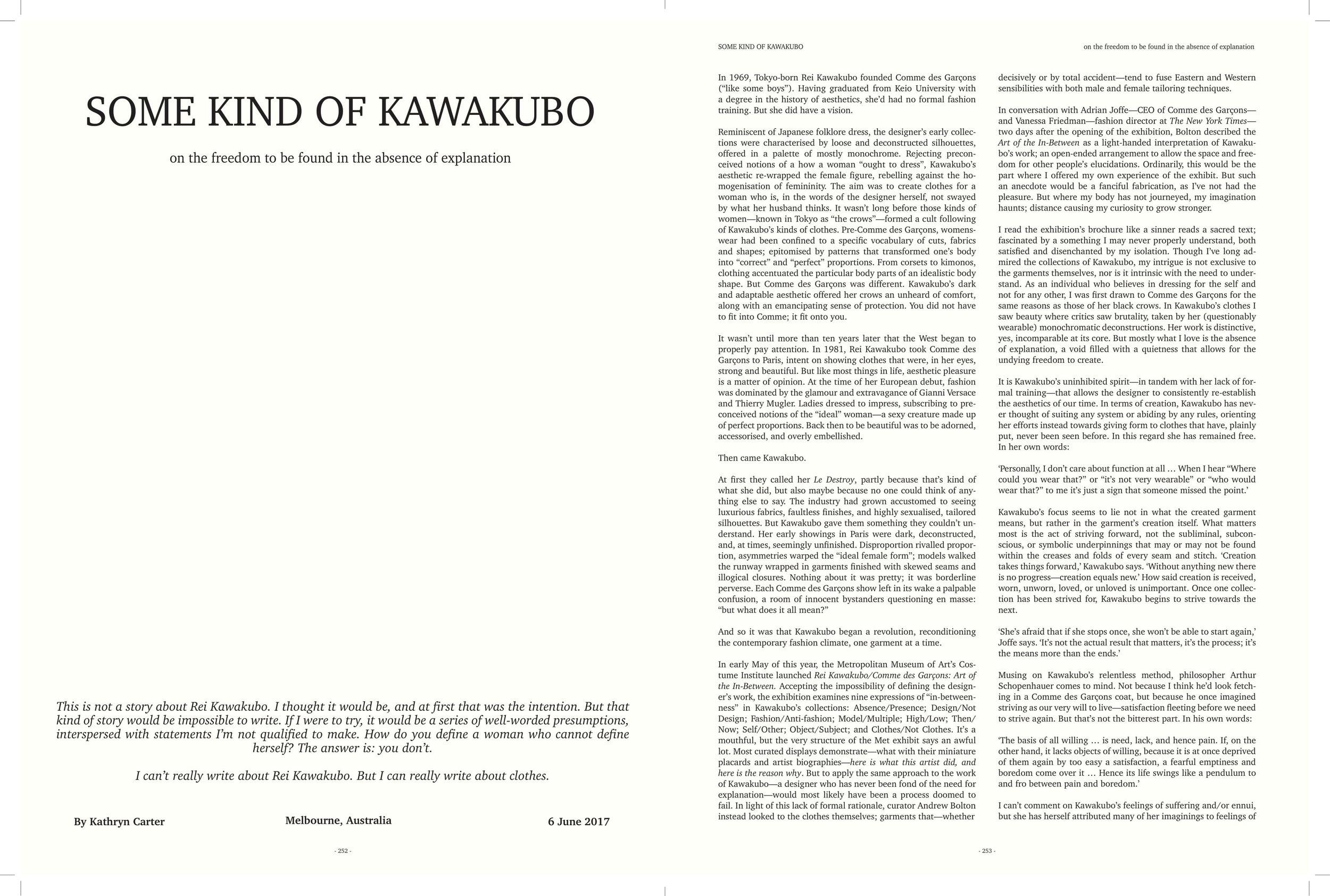 Some kind of Kawakubo-1.jpg