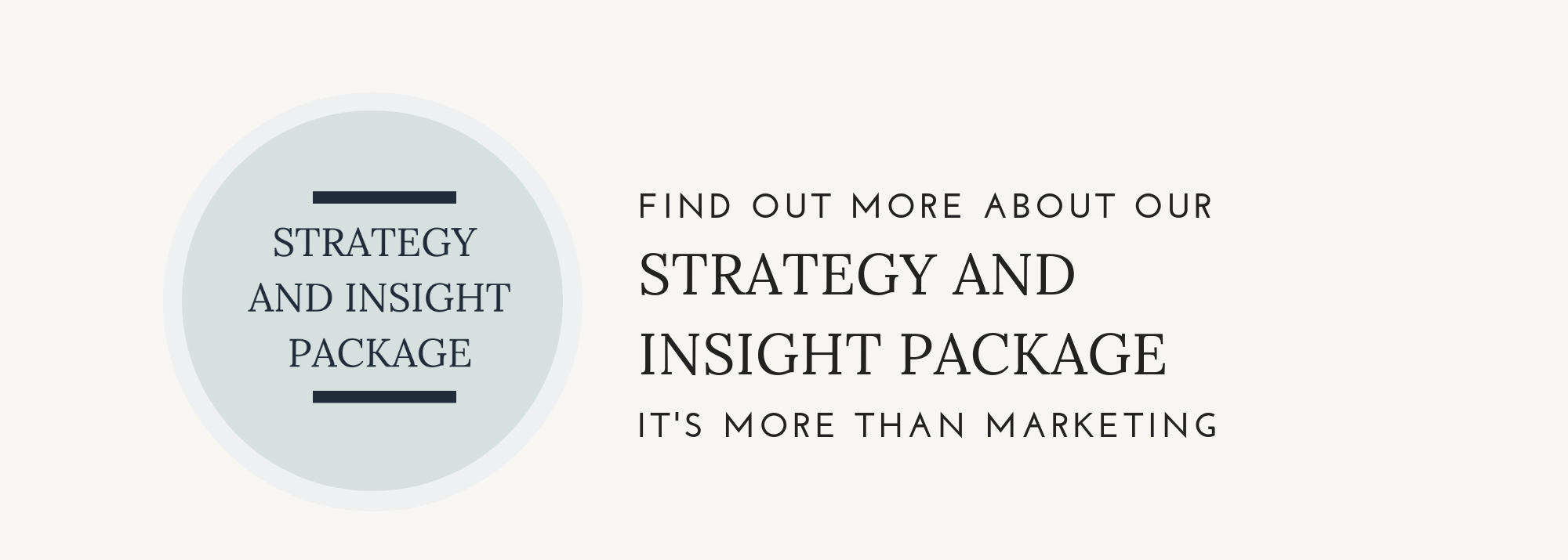 Banner - strategy + Insight.jpg