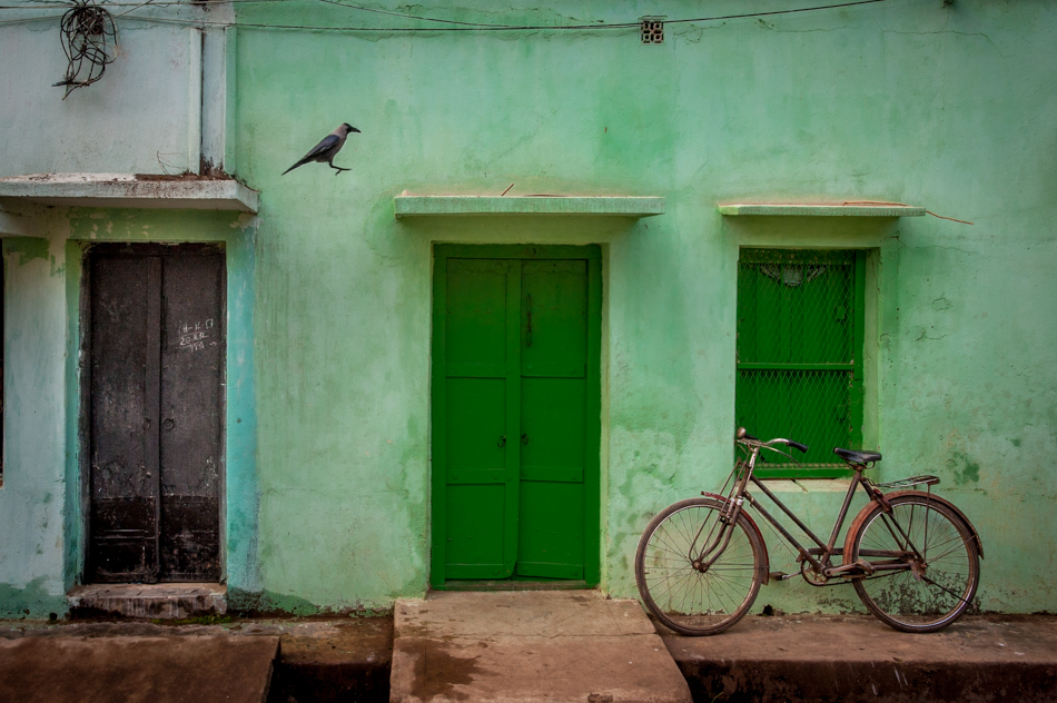 A crow hops between ledges in a residential area of Rampur Hat.