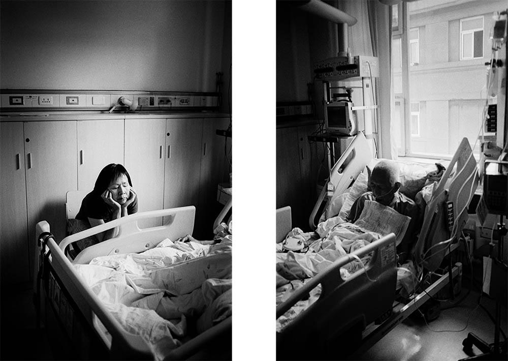 © Sheila Zhao