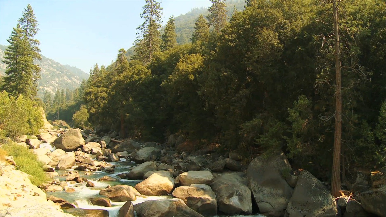 Sequoia-and-Kings-Canyon-National-Parks-008730f_T3382u_c.jpg