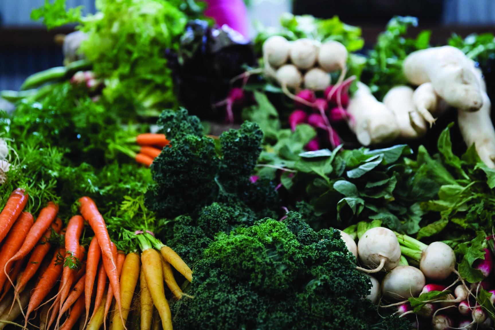 Burnie Farmers' Market - Free Entry
